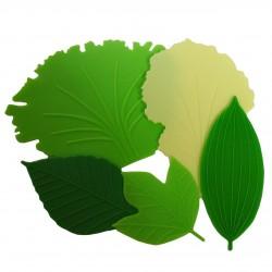 Séparateurs bento en silicone - Laitue et feuilles