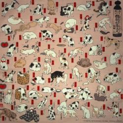 Furoshiki cloth 50x50 - Myokaiko Gojusanbiki