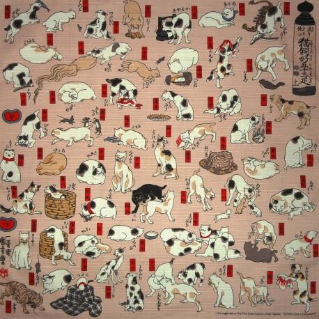 Furoshiki Japanese cloth 50x50 - Myokaiko Gojusanbiki